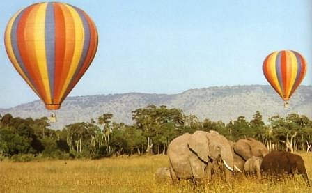 Balloon Safari is one  of the most preferred when a real life adventure is needed!