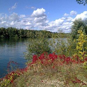 La Seine en bordure du parc de la boucle de Montesson