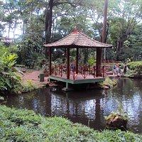 Jardim Japonês - Lago