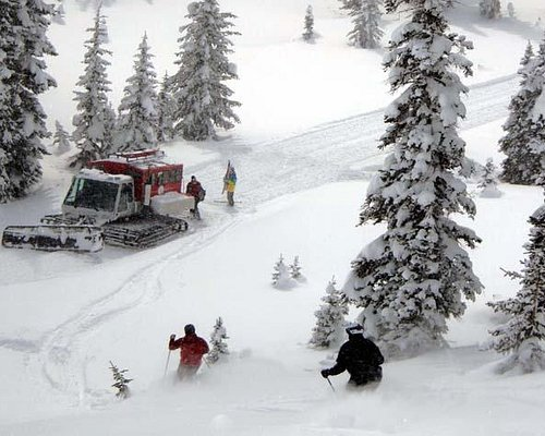 Dropping in on the snowcat for another run in the freshies