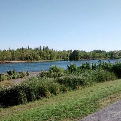 Foto del paseo de la costa