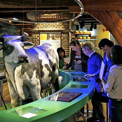 Bezoekers kunnen allerlei foto's en filmpjes bekijken op de interactieve schermen