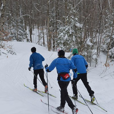 Ski team training at NEOC