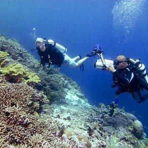 friends diving