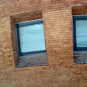 Window and wooden walls