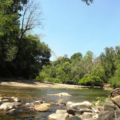 Baveli River in Summer