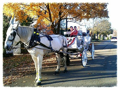 Fall day carriage ride