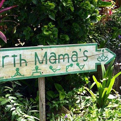 Earth Mama's