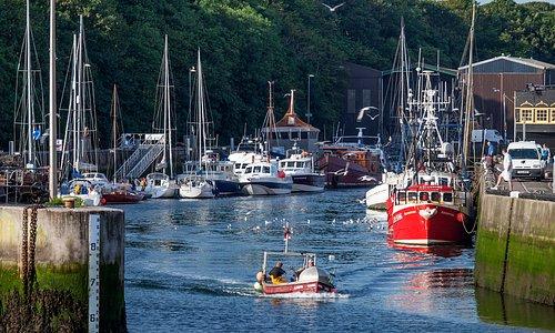 Eyemouth Harbour, inner harbour basin