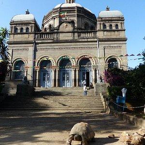 Tortoise - Exterior of The Mausoleum of Menelik II     Niger Street & Itega Menen, Addis Ababa,