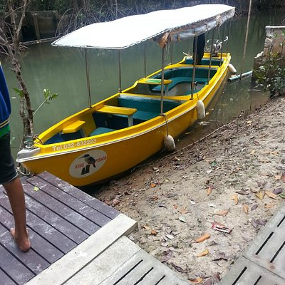 Our electric boat, The Kingfisher