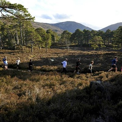 Running on the Balmoral Estate