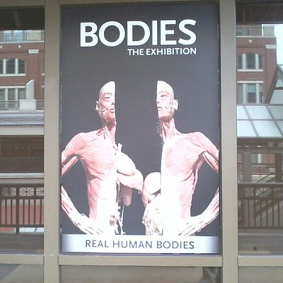 Outside the Exhibit...No cameras allow inside :(