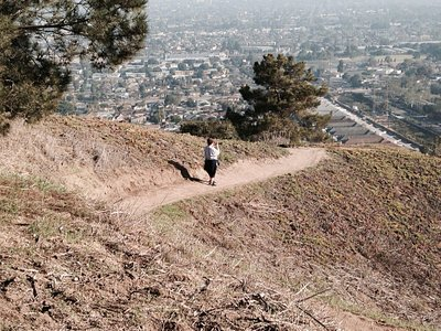 Kenneth Hahn Park Trail. Great local hiking & workout spot!