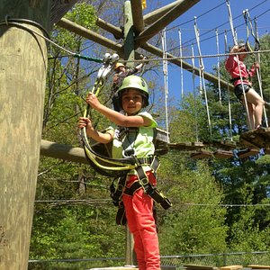 The littlest of monkeys can enjoy the course on the Kids' Course, only 6' off the ground!