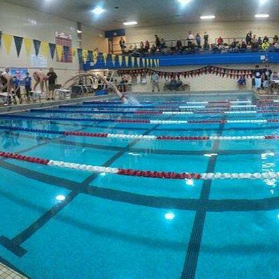 Pan Shot of the Pool during a Swim Meet