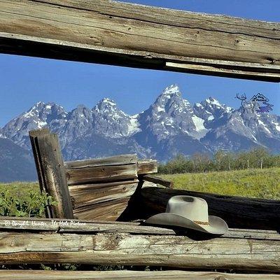 Shane Cabin, Grand Teton National Park, Jackson Hole, Wyoming