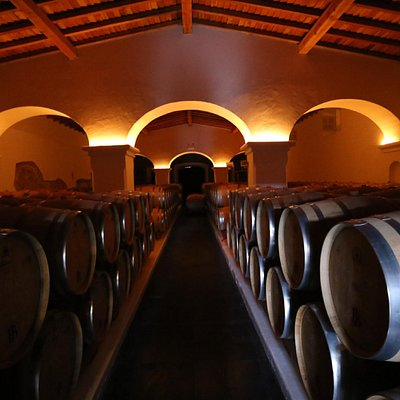 Estremoz Winery
