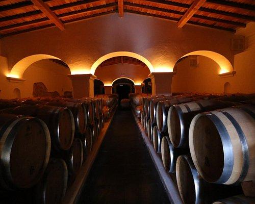 Estremoz Winery