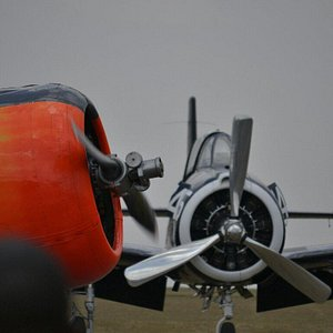 The beautiful sound of radial piston engines.....