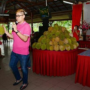 Durians feast in July 2013