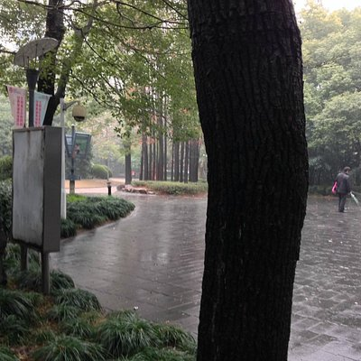 People's Park Near Mocca Museum