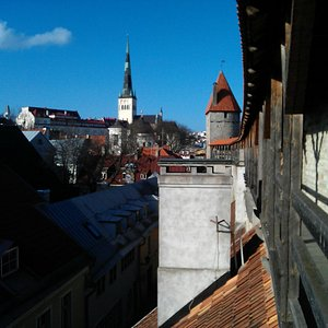 View from the Hellemann Tower