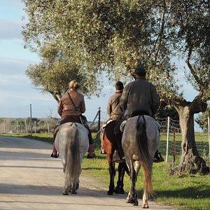Ruta a caballo Pantano Nuevo