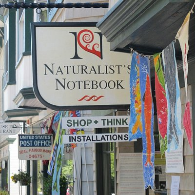 Welcome to the Notebook!