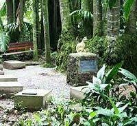 Cemitério de Gatos