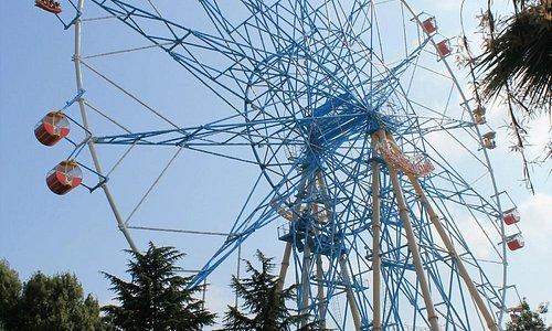 Колесо обозрения - вид из парка