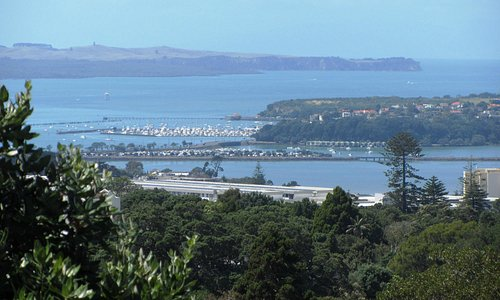 View of Auckland harbour from top of garden