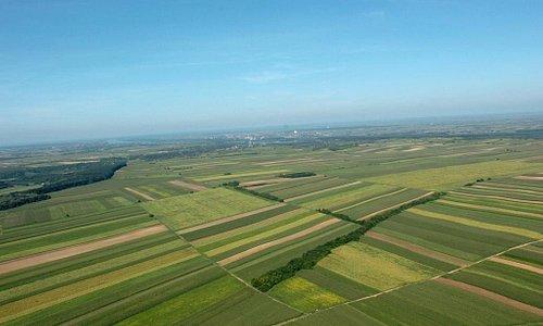 Fields near Krčedin