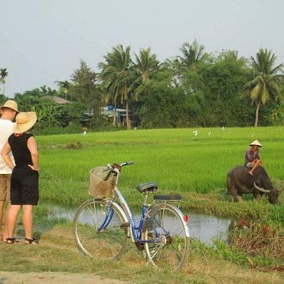Love of Life Bicycle Tours