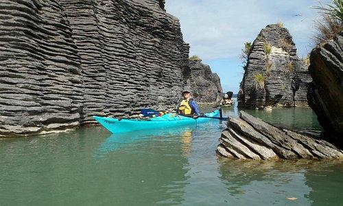Kayaking Kawhia Harbour