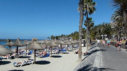 View of Playa Looking West