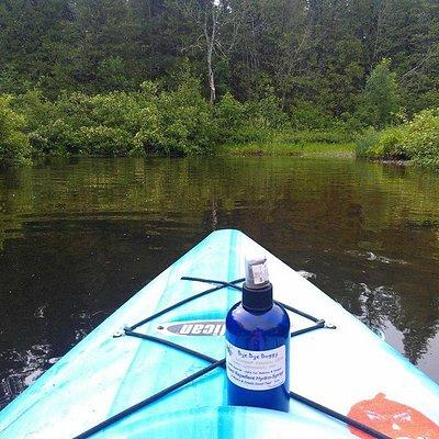 Paddling down the Bear River
