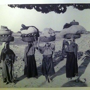 Photo of Palestinian women from museum