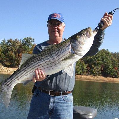 20 Pound Nottely Rockfish