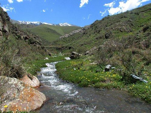 Primavera en La Quebrada del Cóndor