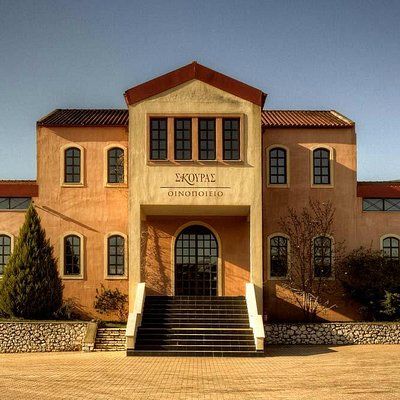 Our winery, open for visitors! Educational tours and tastings, events!
