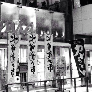 Kalmia Toyohashi