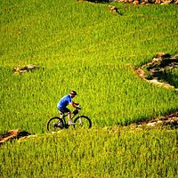 bikking or trekking is the best ways to travel to Muong Hoa valley.You should visit Muong Hoa va