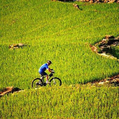 bikking or trekking is the best ways to travel to Muong Hoa valley.You should visit Muong Hoa va