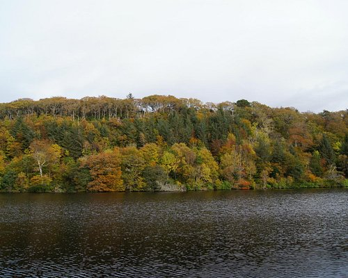View across Aros loch