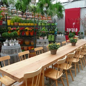 Zocalo's espresso bar has a 16 foot harvest table in the glass covered courtyard