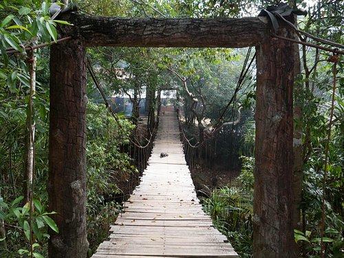 Bridge to the start of the walk up the stream