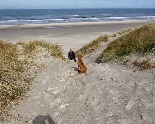 Spaziergang zum Strand