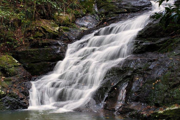 Creek on walk to the falls