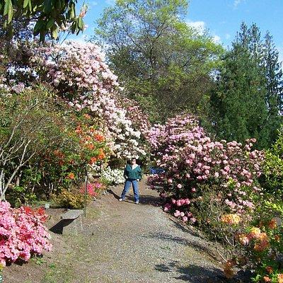 Whitney Gardens in full splendor